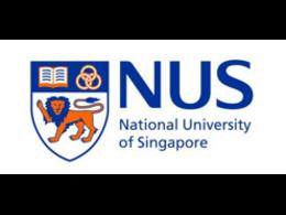 新加坡国立大学-原料药的合成研究