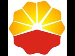 中国石油勘探开发研究院-表面活性剂的合成制备