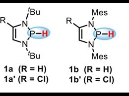 氮杂环磷氢化合物负氢反应活性的标定及合成应用