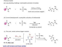 酰胺叶立德的捕获:锌催化(E)-N-砜基脒的选择性构建